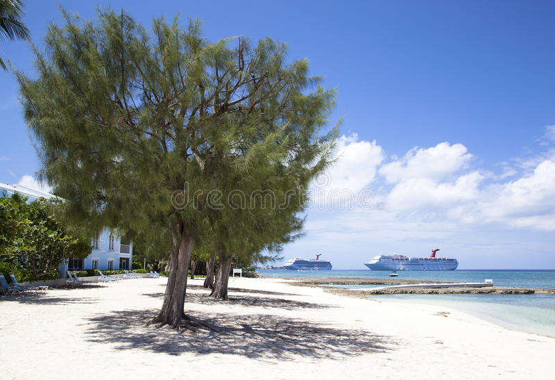 Spiaggia di Grand Cayman fotografie stock libere da diritti