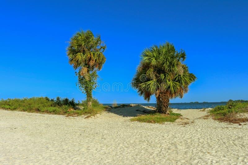 Spiaggia di Howard Park immagini stock