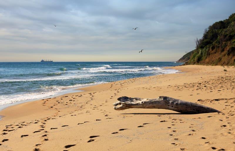 Spiaggia di Irakli sul litorale bulgaro del Mar Nero fotografia stock