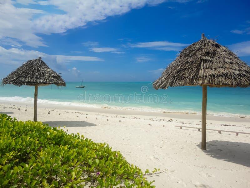 Spiaggia di Jambiani a Zanzibar, Tanzania fotografia stock libera da diritti