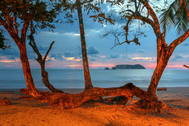 Spiaggia di Manuel Antonio, Costa Rica immagine stock libera da diritti