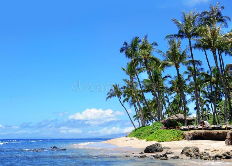 Spiaggia di Maui, Hawai fotografia stock