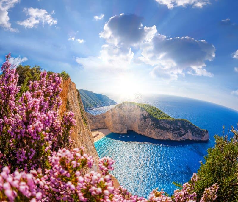 Spiaggia di Navagio con il naufragio ed i fiori contro cielo blu sull'isola di Zacinto, Grecia immagini stock libere da diritti