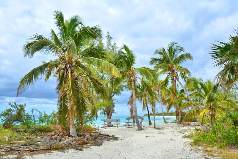 Spiaggia di Paradise sull'isola, Bahamas fotografie stock libere da diritti