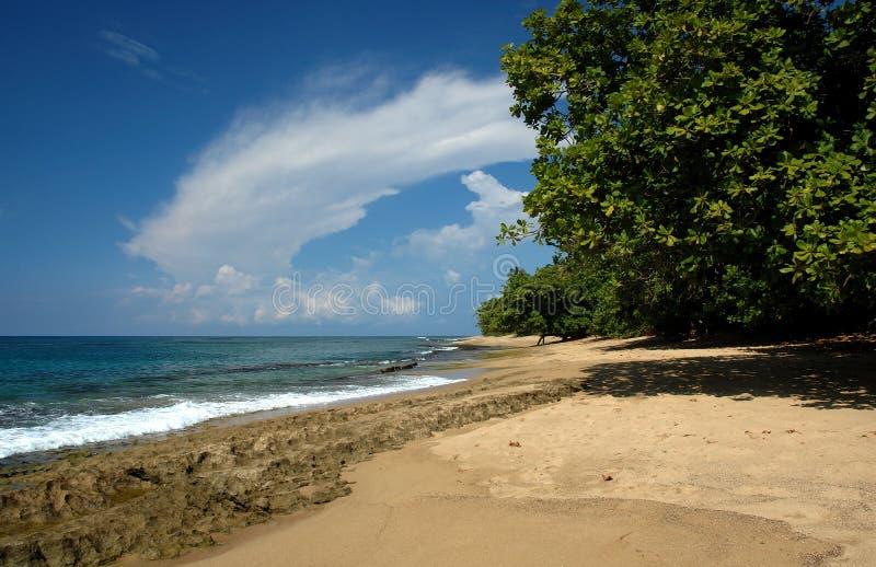 Spiaggia di paradiso fotografia stock libera da diritti