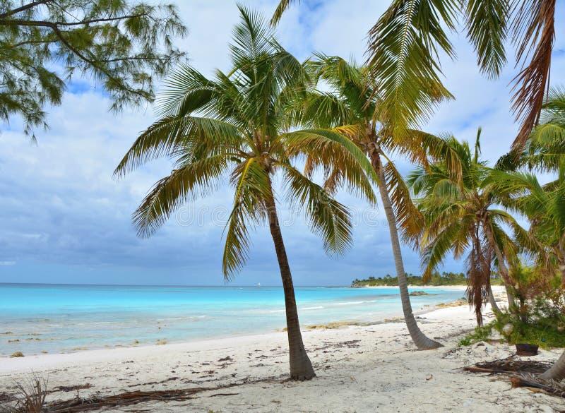Spiaggia di paradiso sull'isola di Eleuthera fotografia stock