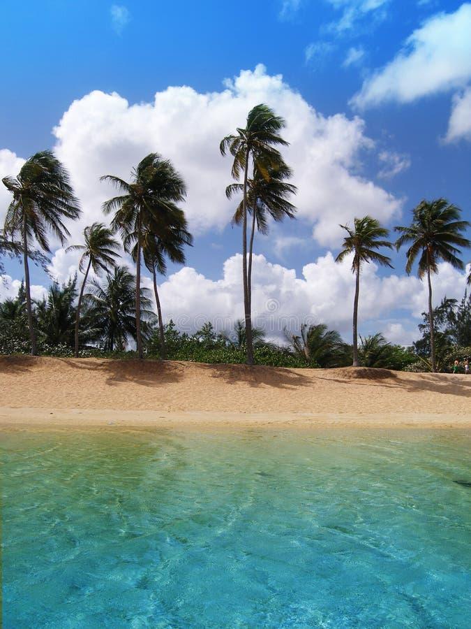 Spiaggia di Piñones fotografie stock