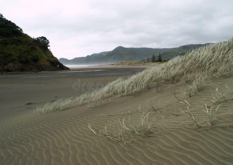 Spiaggia di Piha immagine stock libera da diritti