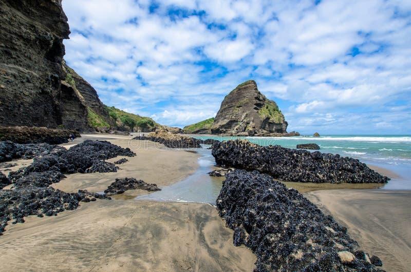 Spiaggia di Piha che è situata alla costa ovest a Auckland, Nuova Zelanda immagine stock libera da diritti