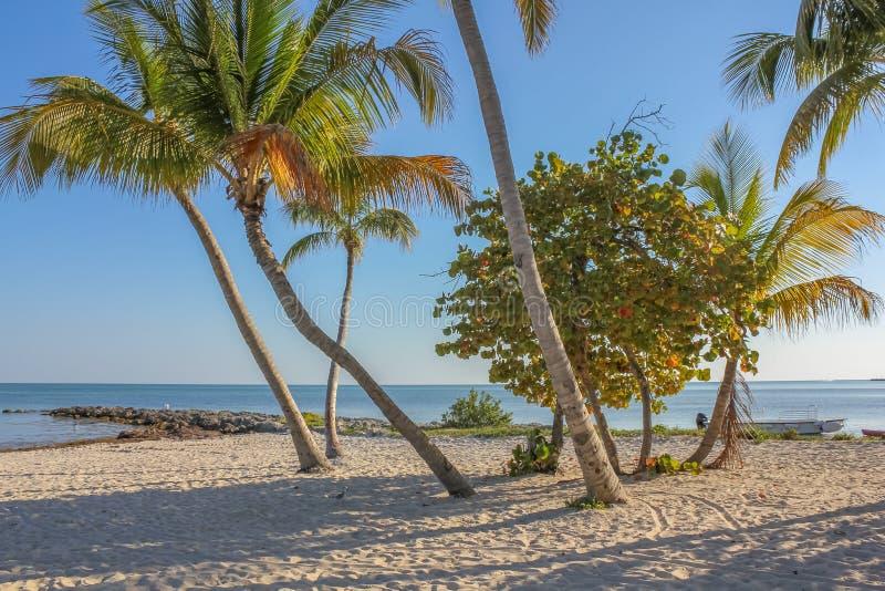 Spiaggia di resto in Key West fotografie stock libere da diritti