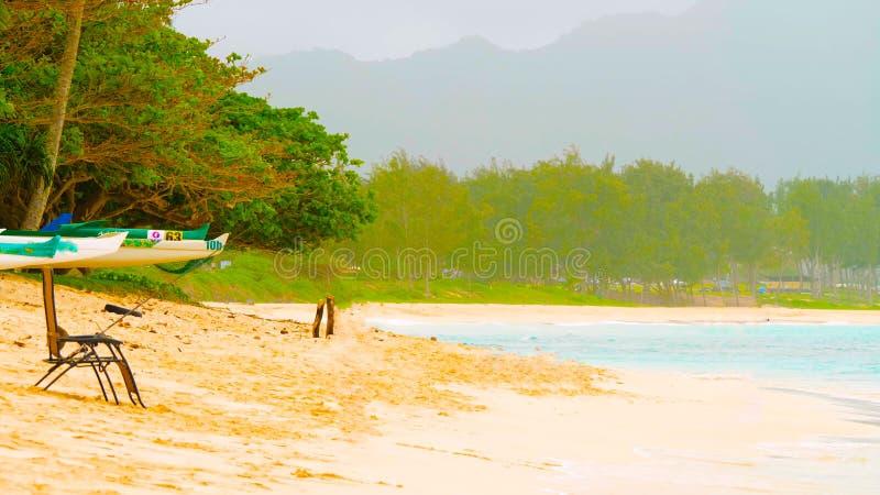 Spiaggia di sabbia bianca di Paradise con il mare della palma e del turchese di Cochi Vacanze estive e concetto di viaggio fotografie stock libere da diritti