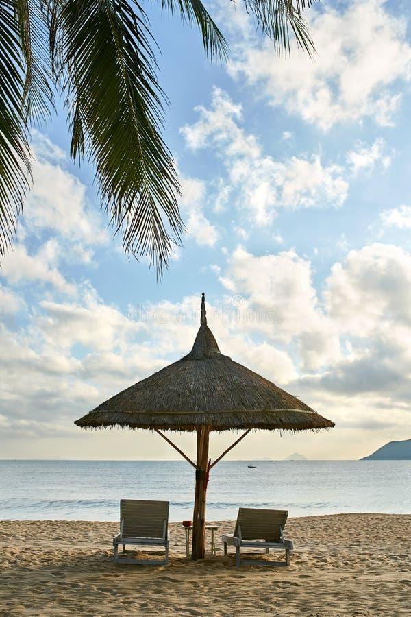 Spiaggia di sabbia tropicale con la palma e posto per rilassarsi fotografia stock libera da diritti