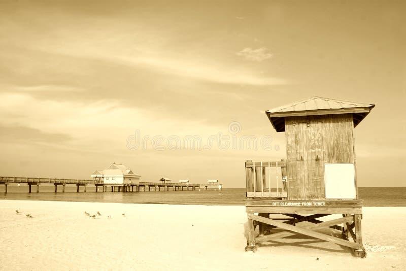 Spiaggia di seppia immagini stock