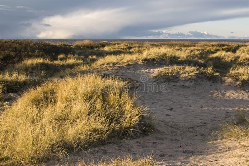 Spiaggia di Sibirien in Angelholm Svezia fotografia stock