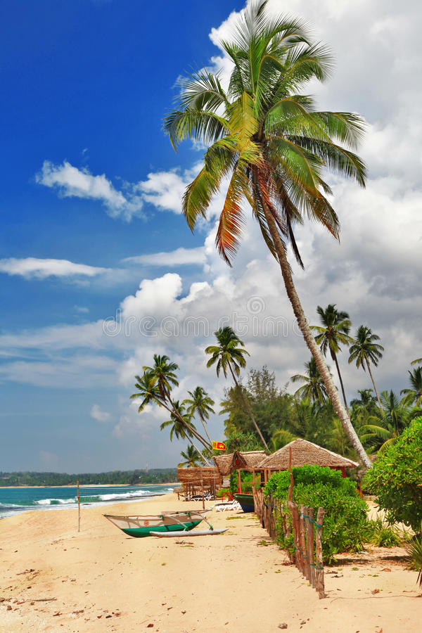 Spiaggia di Sri lanka immagini stock