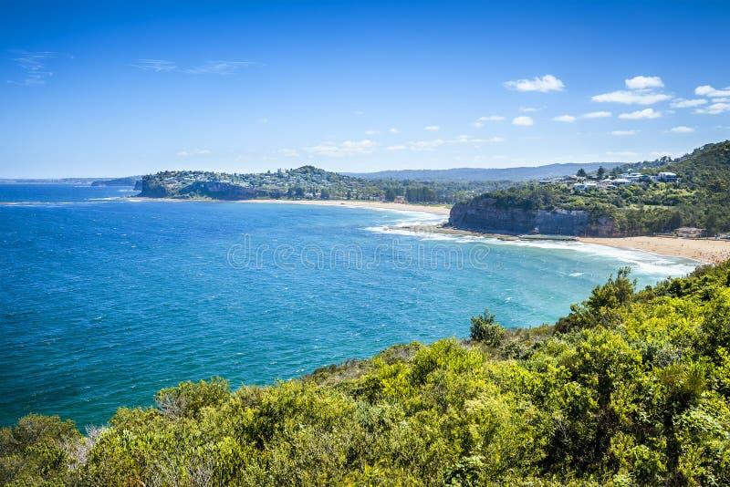 Spiaggia di Sydney Australia immagine stock libera da diritti