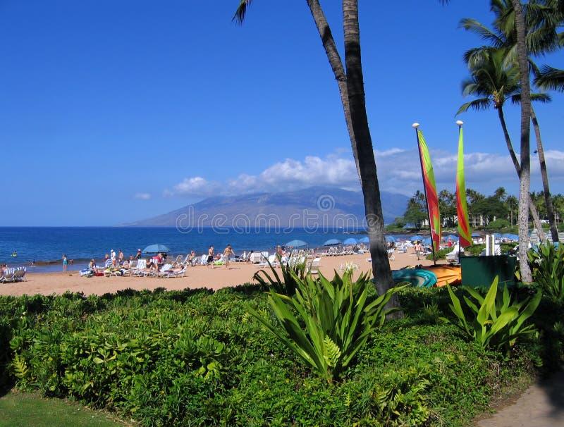 Spiaggia di Wailea, Maui, Hawai immagini stock libere da diritti