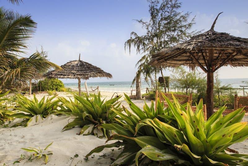 Spiaggia di Zanzibar fotografie stock libere da diritti