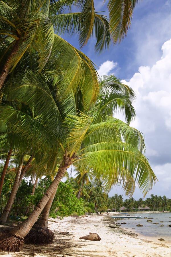 Spiaggia a distanza tropicale immagini stock