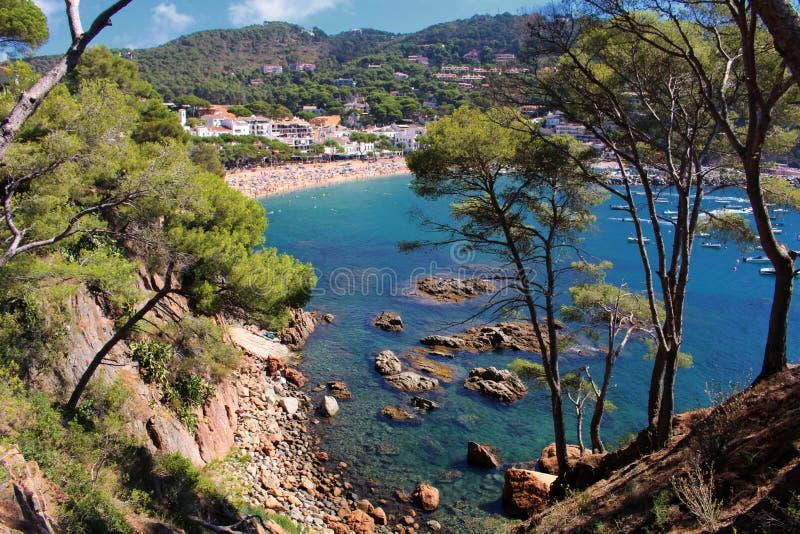 Spiaggia e natura di Llafranc fotografia stock libera da diritti