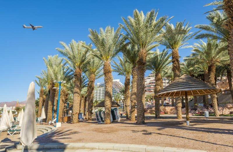 Spiaggia e passeggiata pubbliche centrali in Eilat, Israele fotografia stock