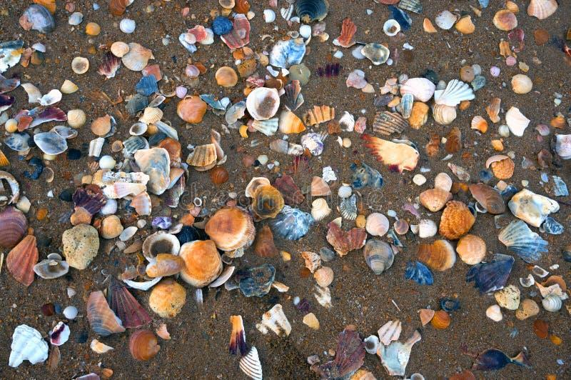 Spiaggia e sabbia di Lagos fotografia stock libera da diritti