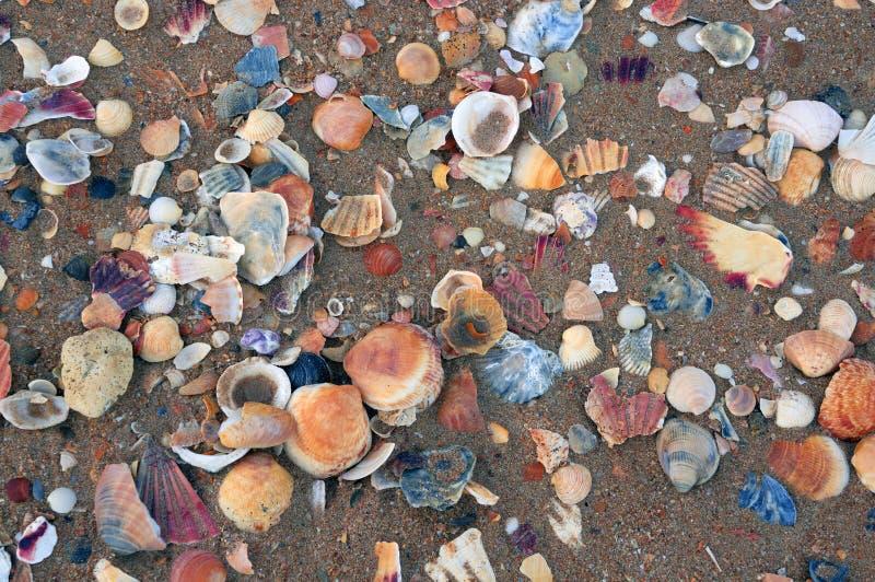 Spiaggia e sabbia di Lagos fotografie stock libere da diritti
