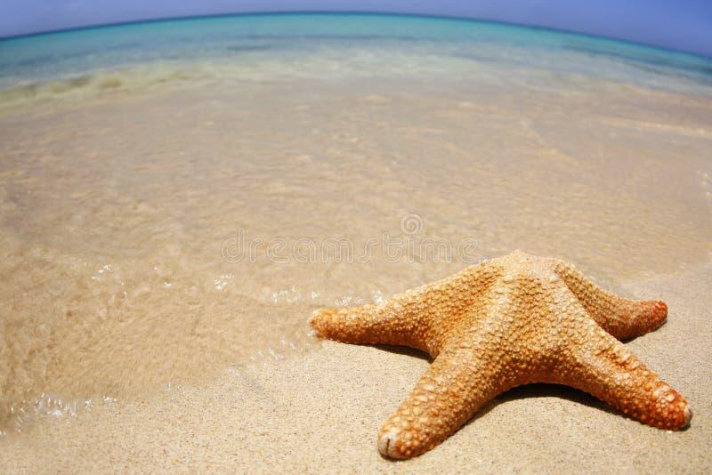 Spiaggia grandangolare immagini stock libere da diritti