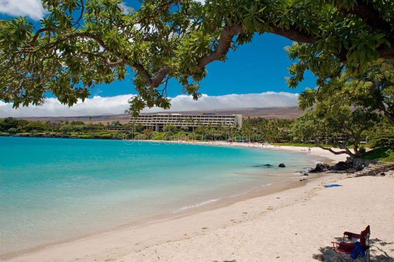 Spiaggia hawaiana fotografia stock libera da diritti