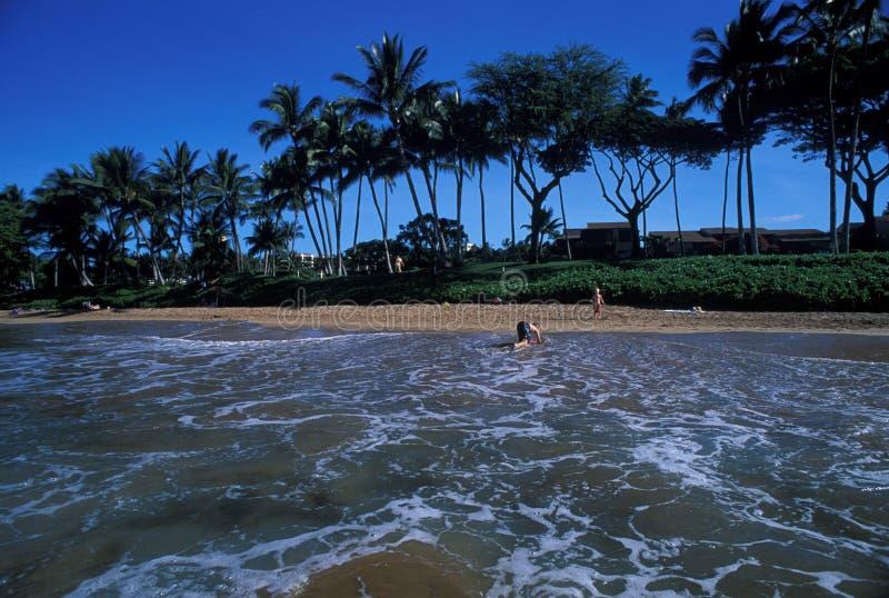 Spiaggia hawaiana fotografie stock