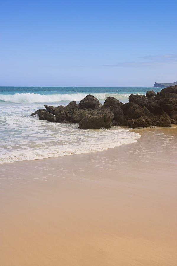 Spiaggia hawaiana fotografie stock libere da diritti