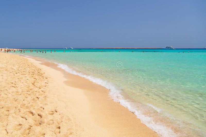 Spiaggia idilliaca con acqua del turchese nell'Egitto immagine stock libera da diritti