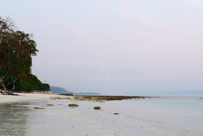 Spiaggia incontaminata serena, calma e pacifica con il chiaro cielo - spiaggia di Kalapathar, isola di Havelock, isole Nicobar di fotografia stock