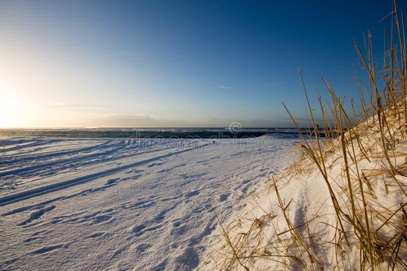 Spiaggia innevata all'alba fotografie stock