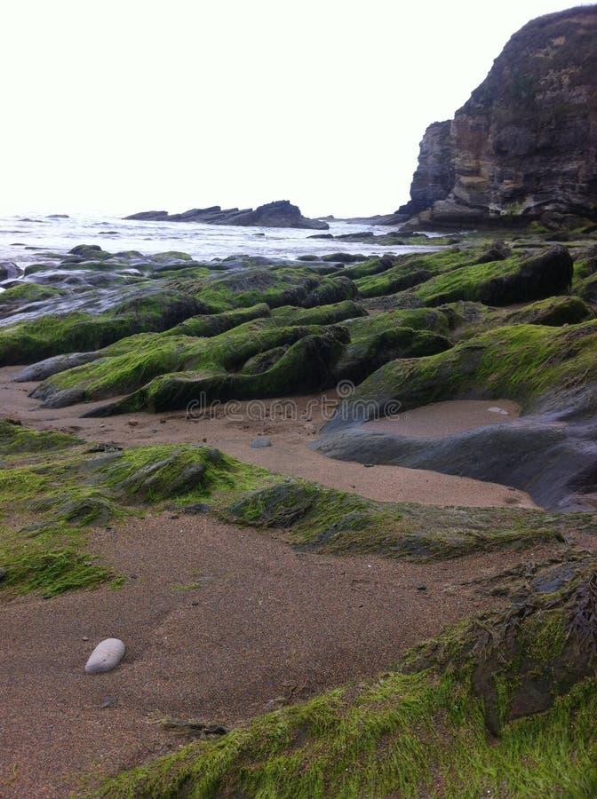 Spiaggia irlandese immagini stock libere da diritti