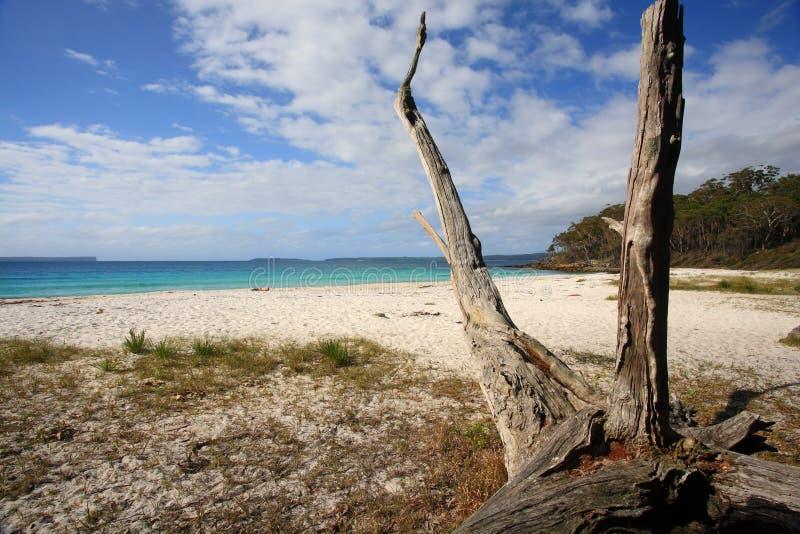 Spiaggia Jervis Bay Australia dei Greenfields fotografie stock libere da diritti
