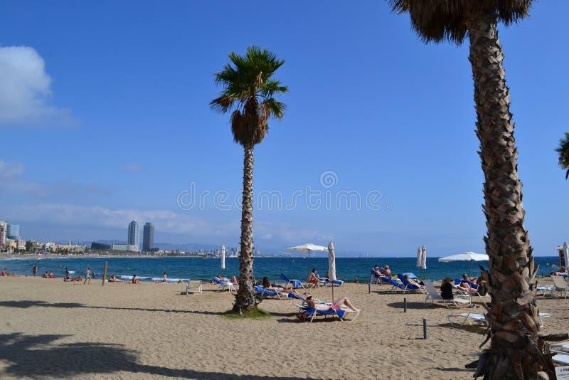 Spiaggia Mediterranea La Playa de la Barceloneta - Barcellona Spagna immagini stock