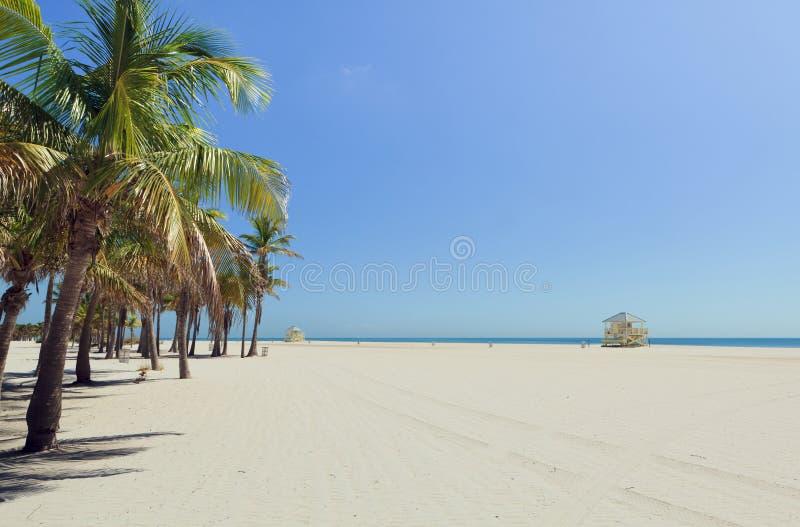Spiaggia Miami della sosta di Crandon fotografia stock