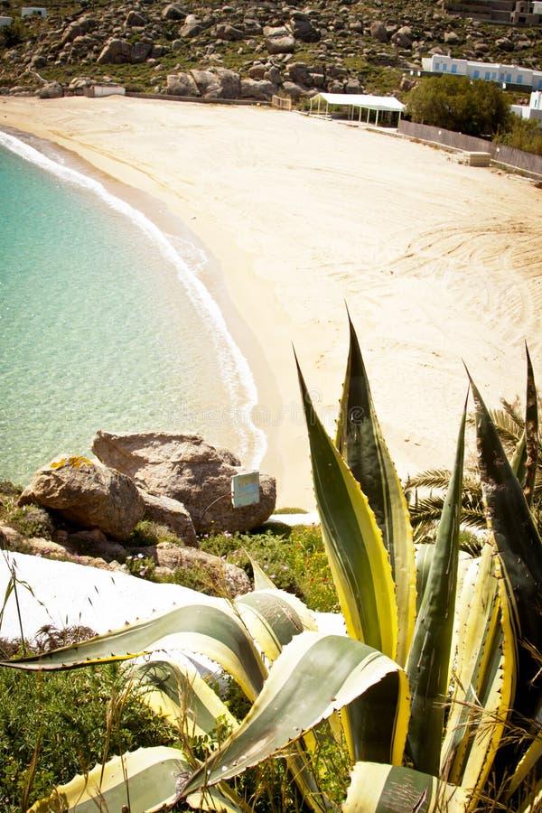 Spiaggia in Mykonos, Grecia fotografie stock libere da diritti