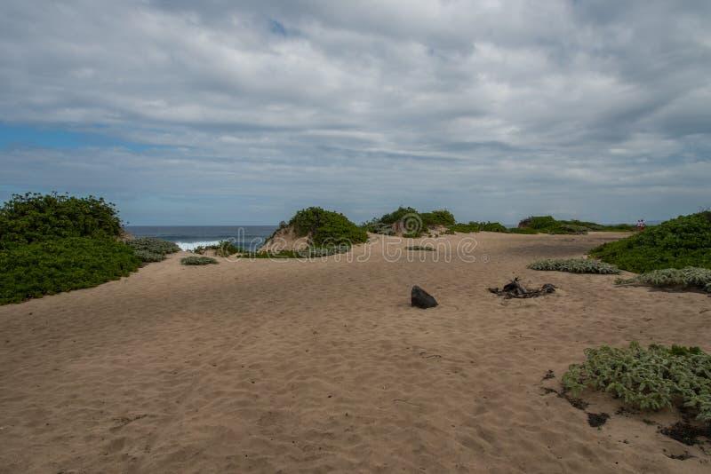 Spiaggia nascosta, Oahu fotografia stock libera da diritti