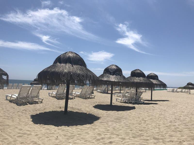 Spiaggia naturale dei parasoli fotografia stock libera da diritti