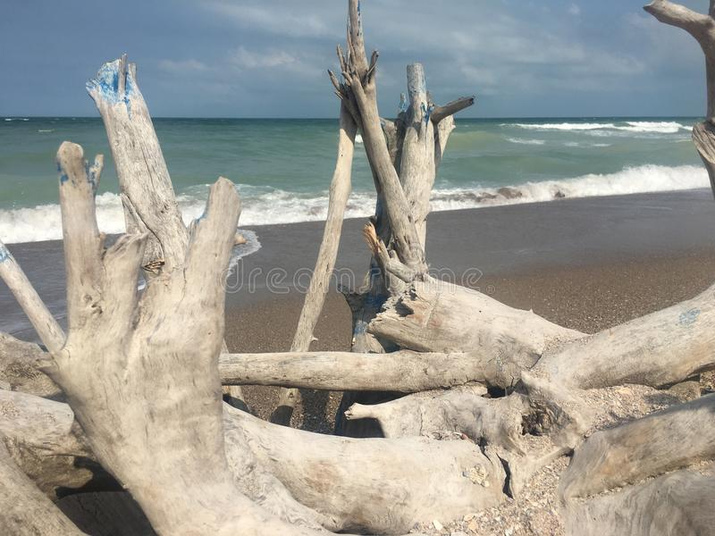 spiaggia nel freedem fotografie stock