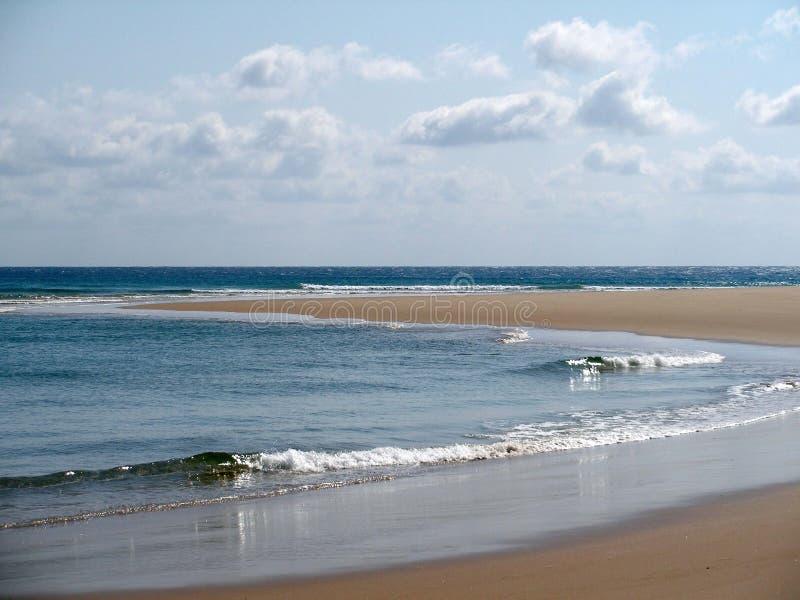 Spiaggia Nel Mozambico Immagini Stock Libere da Diritti