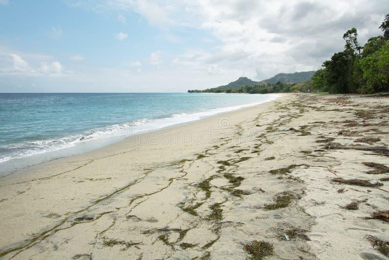 Spiaggia nell'isola del Flores immagini stock