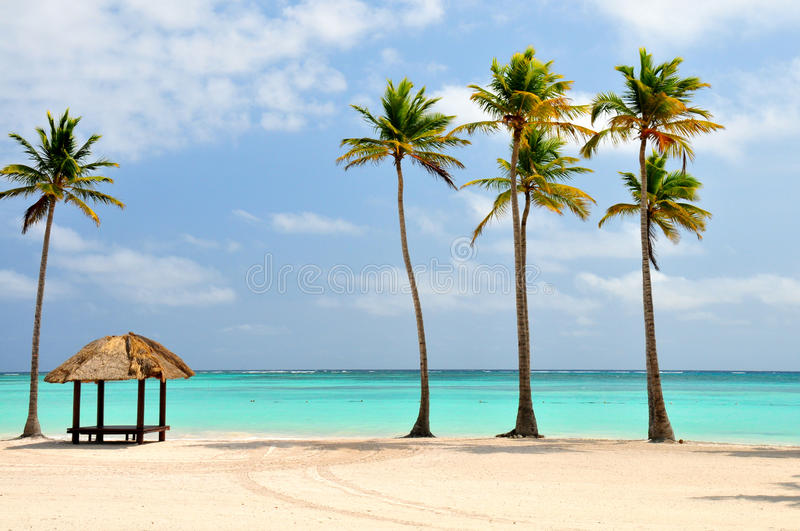 Spiaggia Nella Repubblica Dominicana Fotografia Stock Libera da Diritti