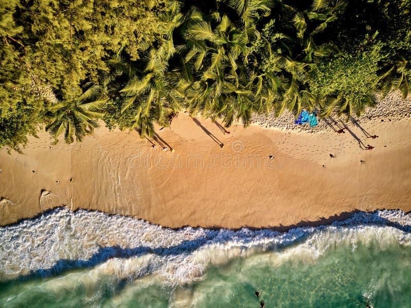 Spiaggia nella vista aerea superiore delle Seychelles fotografia stock libera da diritti
