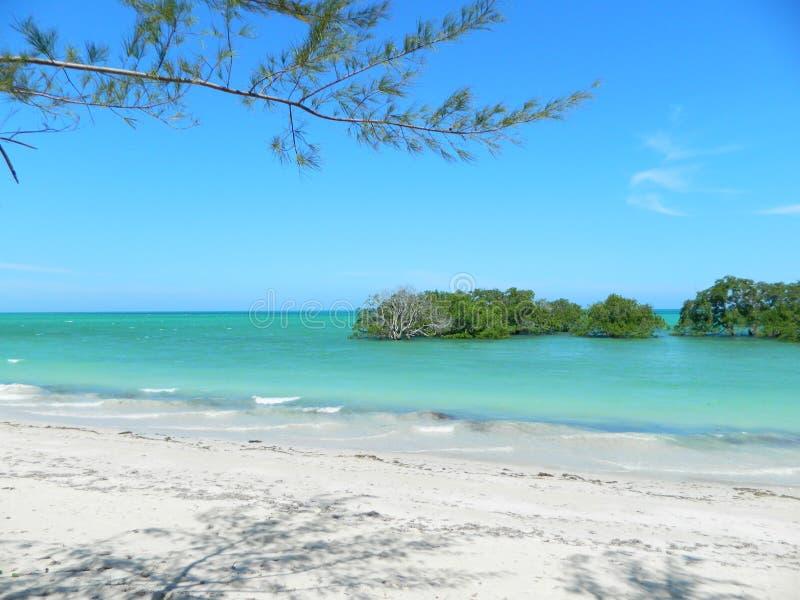 Spiaggia nordica del Mozambico fotografia stock