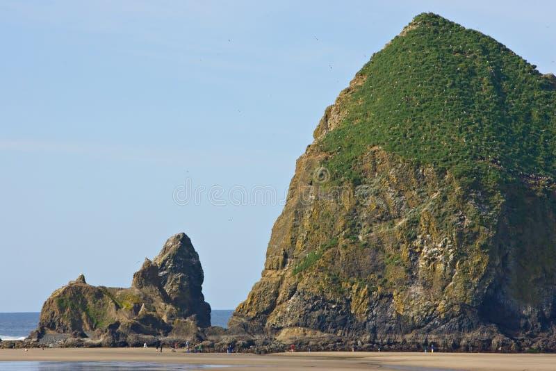 Spiaggia Oregon del cannone della roccia del mucchio di fieno immagini stock