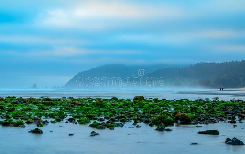 Spiaggia Oregon del cannone di bassa marea fotografie stock