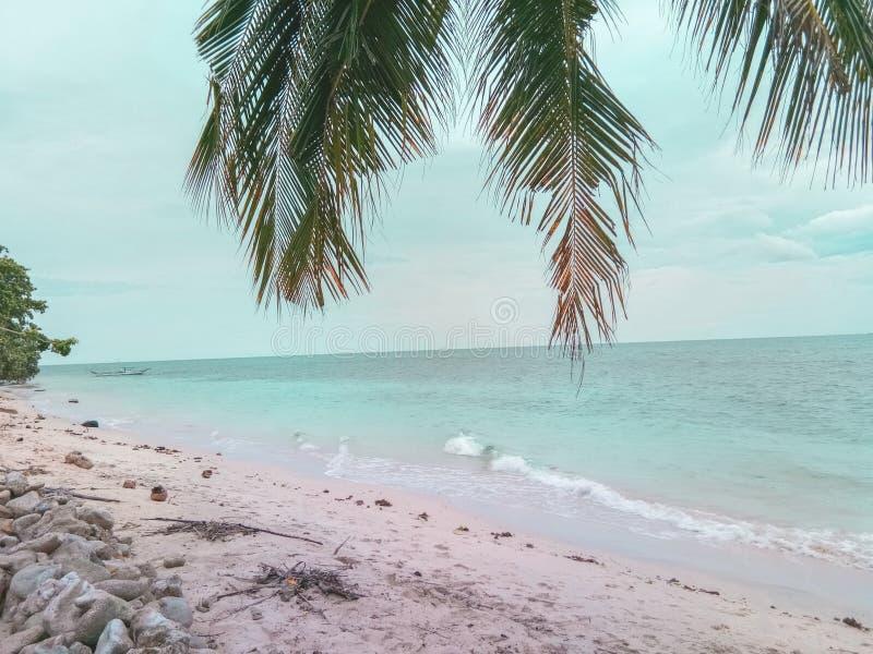 Spiaggia per favore! fotografia stock libera da diritti